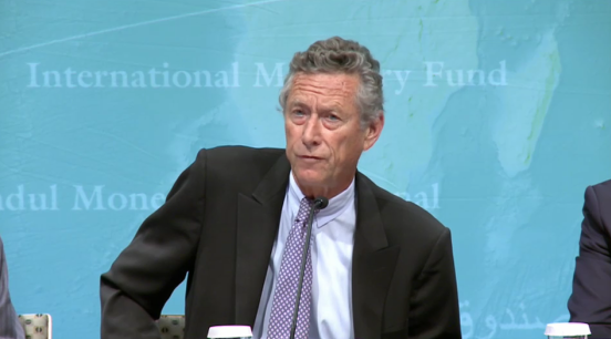 Important take from for IMF chief economist