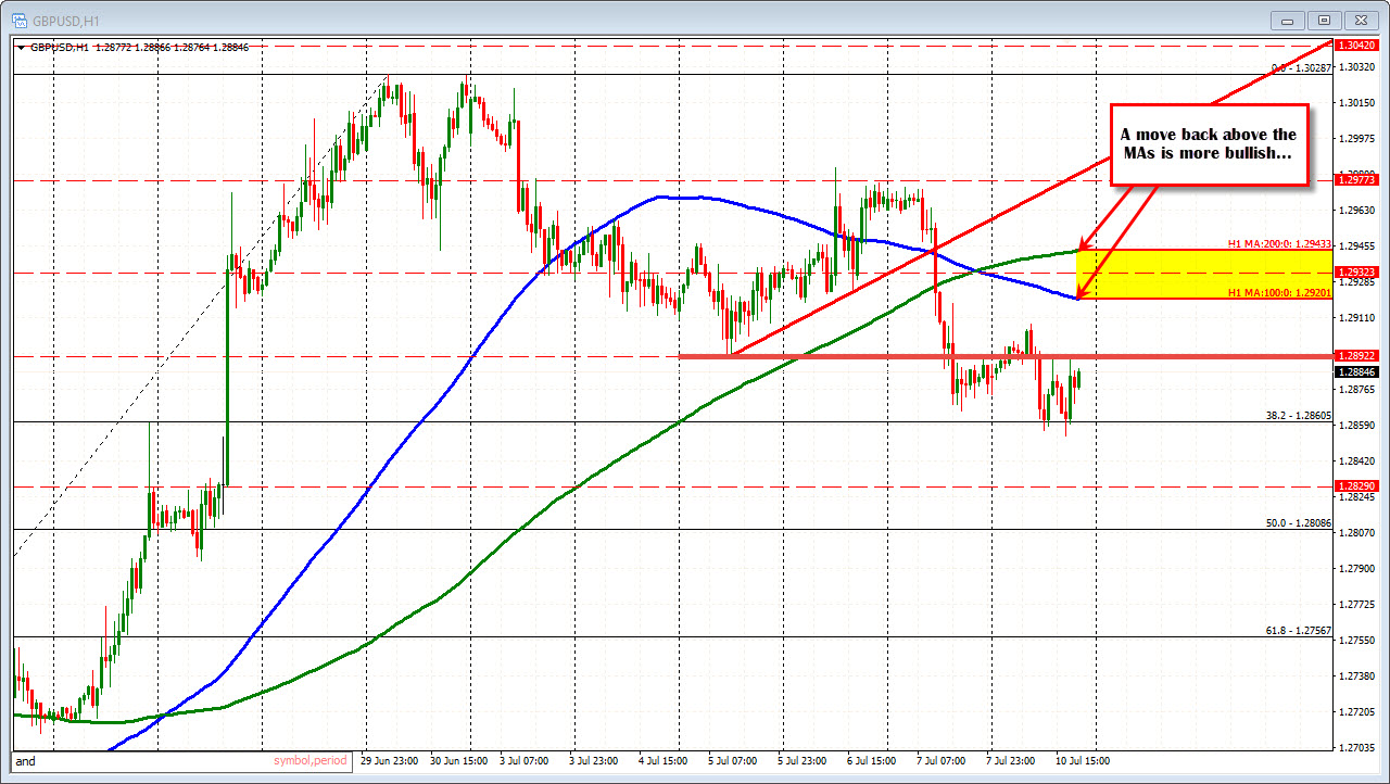 Royal capital markets forex