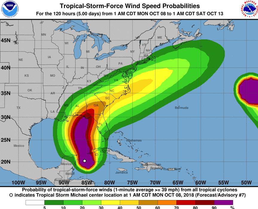 Michael storm forex