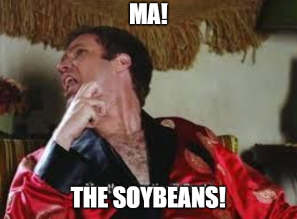 kudlow soybeans